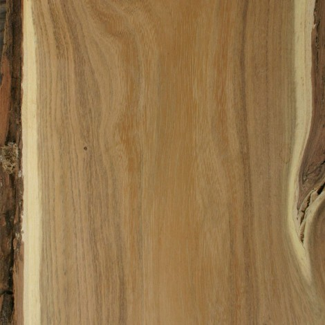 Black Locust Wood Black Locust Wood